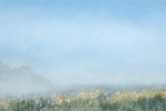 Field In Fog IV<br /> Oil on board, 23 x 41